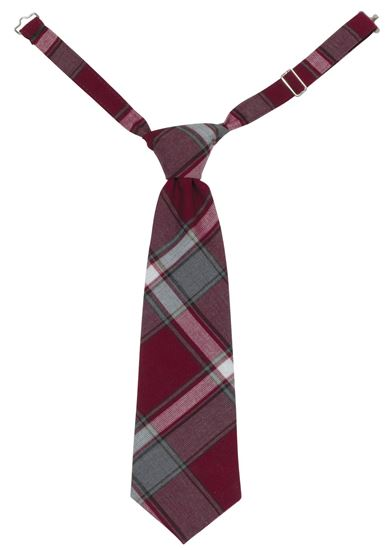 Picture of FBE41 Pre-tied Plaid Tie