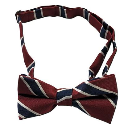 Picture of FBE227  - Striped Bow tie