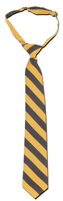 Picture of FBE228 - Pre-tied Stripe tie